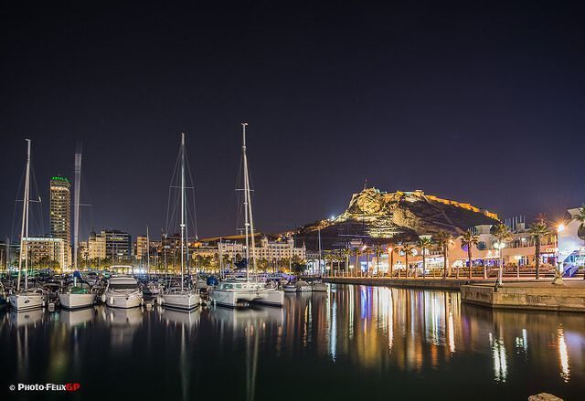 The 2016 FEDELE Annual Meeting to be held in Alicante