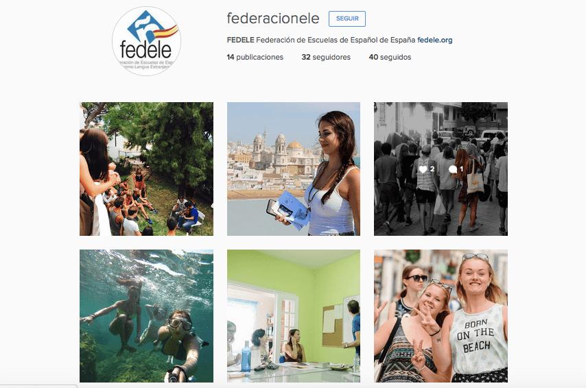 Campaña de los centros FEDELE en Instagram