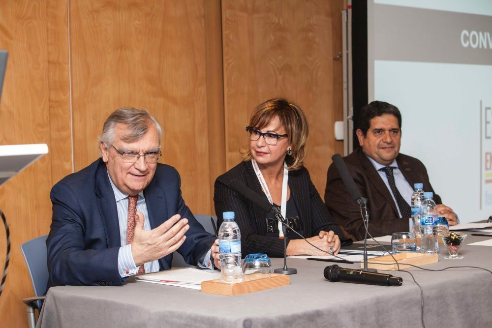 convencion anual fedele 2018 - 10