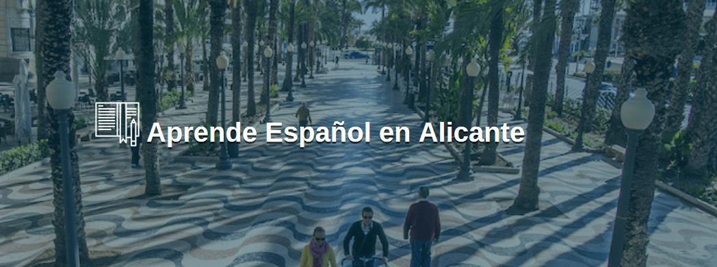 Alicante apuesta por el Turismo Idiomático y muestra su apoyo a las escuelas de español de FEDELE en la ciudad